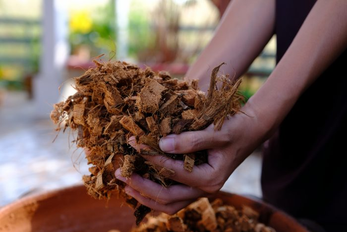 Beginner's Guide to Biomass Boilers