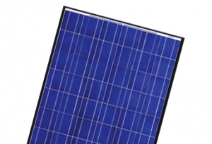 Canadian Solar CS6P-P