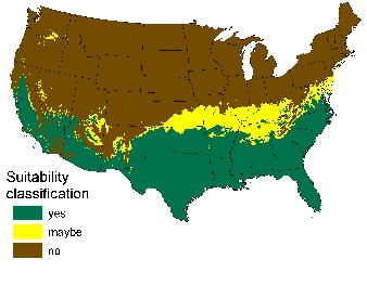 The possible range of Burmese pythons across the U.S. by 2100. (Map courtesy of the USGS.)