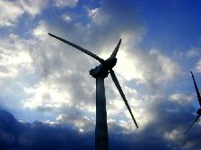 A wind turbine in Hawaii — similar sights coming to Florida soon? (Image credit: Harvey McDaniel at Wikimedia Commons under a Creative Commons license.)