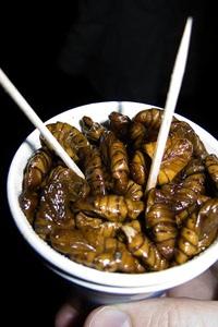 Boiled silk worms, peondegi