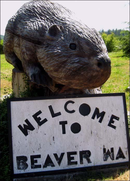 Beaver, WA