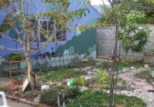 Juanita's Garden