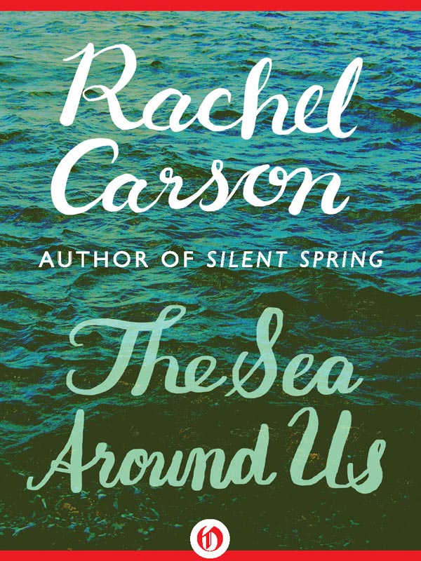 the contribution of rachel carson essay