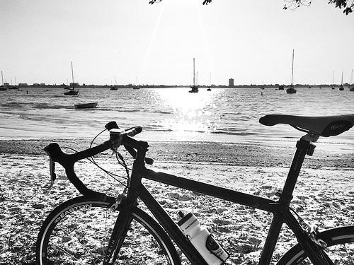 bicycling on sarasota florida beaches