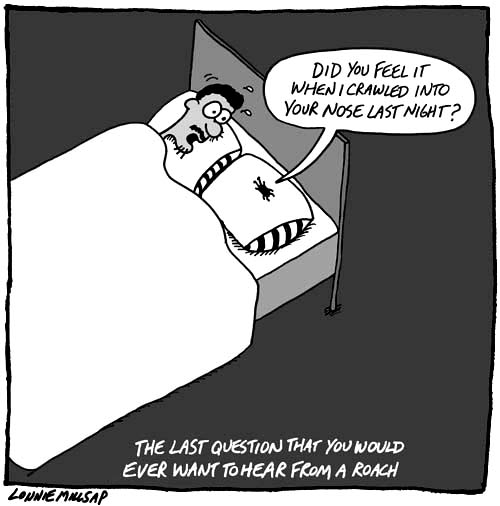 Lonnie Millsap's cockroach pillow talk comic