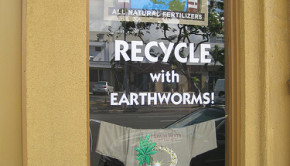 worms recycle