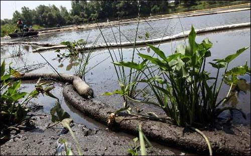 michigan oil spill