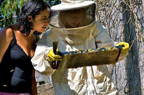 Janell Kapoor at the Urban Farm School