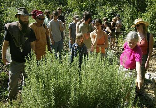 Workshop at urban farm school