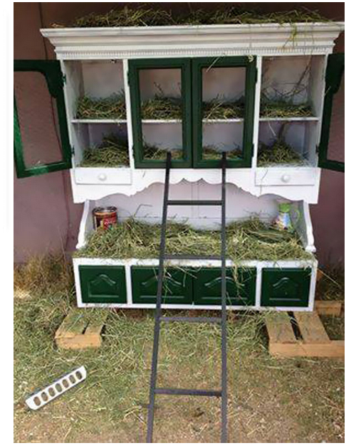 chicken coop cabinet