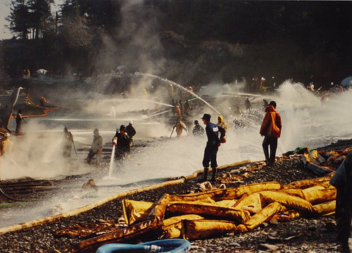 Cause & Effects of the Exxon Valdez Oil Spill: Environmental Impact