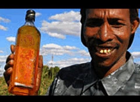 ZapRoot: Cow Urine Soda