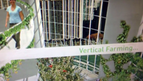 vertical-farming_main
