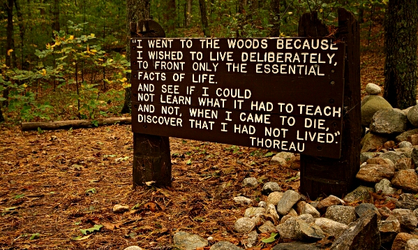 thoreau quote on life wikicommons