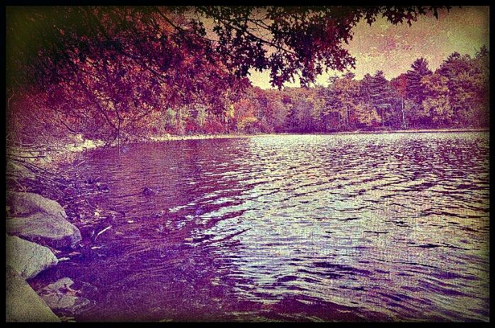 thoreau walden pond 700 wikicommons edited by aisha